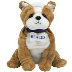 Ty Beanie Baby - Bonzer the Bulldog (Beales UK Exclusive)
