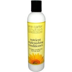 Jane Carter Pflegende Aufbau-Spülung und Kur Jane Carter Nutrient Replenishing Conditioner