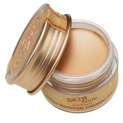 Skinfood Salmon Darkcircle Concealer Cream