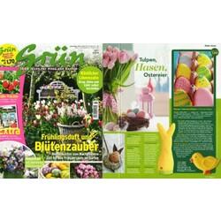 Grün 1000 ideen für Haus und Garten - 4195552401903 ...