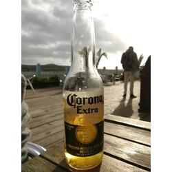 corona bier gluten