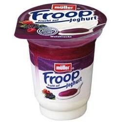 Froop Joghurt Waldfrucht