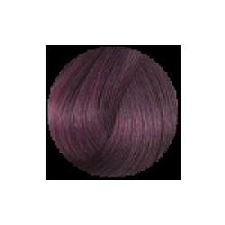 Sanotint Haarfarbe 21 heidelbeere