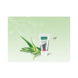 RAUSCH - Herbal Styling Gel strong