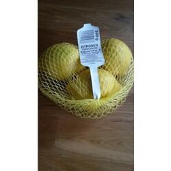 Zitronen Primofiori