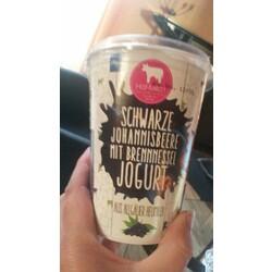 Hof-Milch Sommeredition schwarze Johannisbeere mit Brennnessel Jogurt