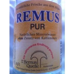 Remus Pur
