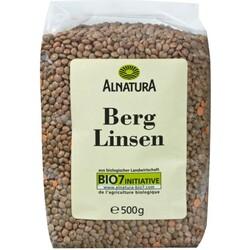 Alnatura Bio Berglinsen 500 g