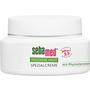 sebamed Tagespflege Trockene Haut Spezialcreme