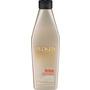 REDKEN Frizz Dismiss (300ml  Shampoo)