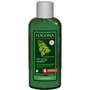 LOGONA Pflege Shampoo Brennessel